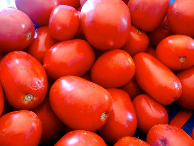 tomato-umbria-red